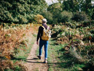 K pohybu se jako základní cvičení dají výborně použít běžné každodenní aktivity. Zkuste například cílenou chůzi do schodů.