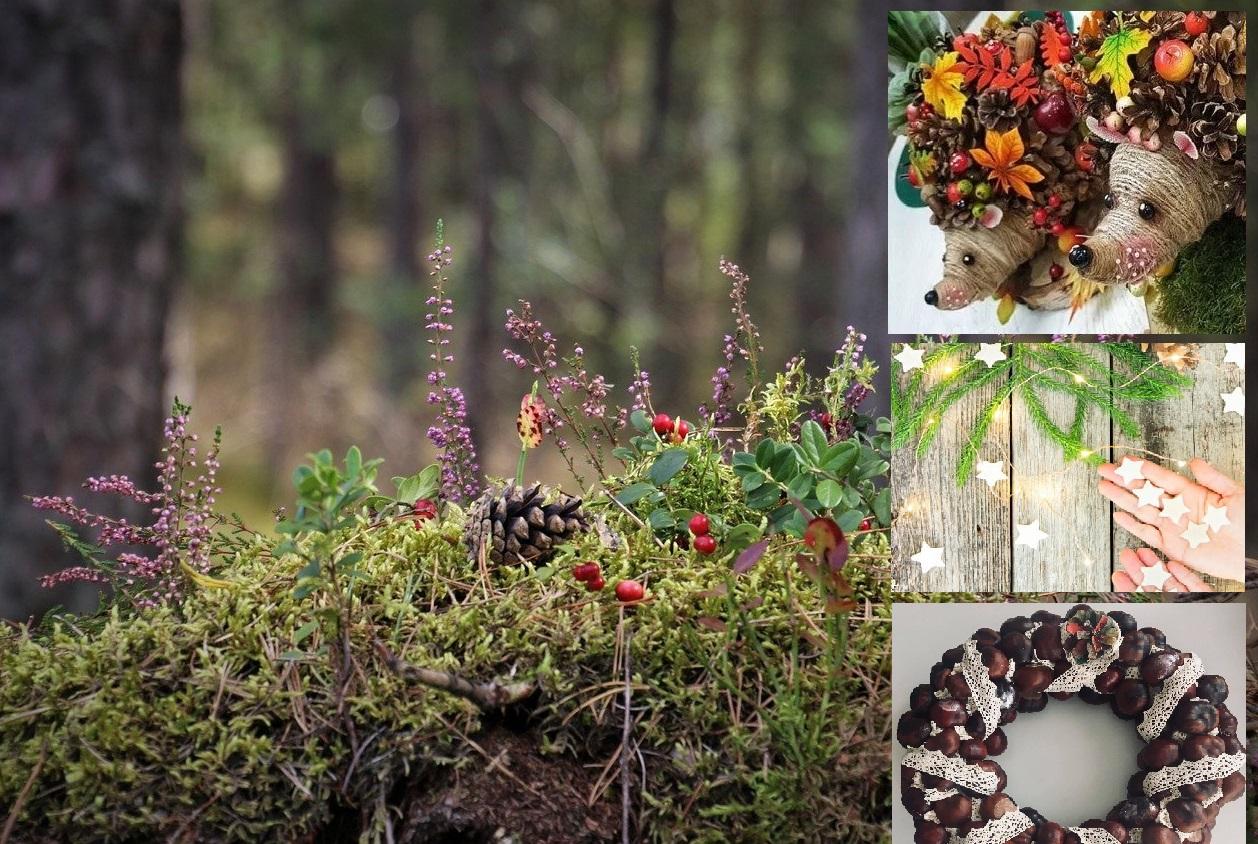 Podzimní krajina a dekorace