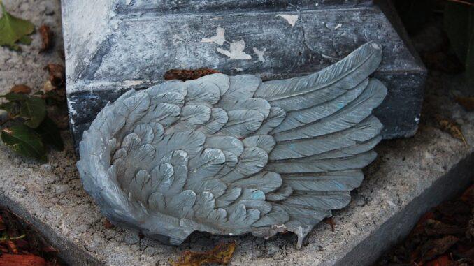 Ulomené křídlo kameného anděla