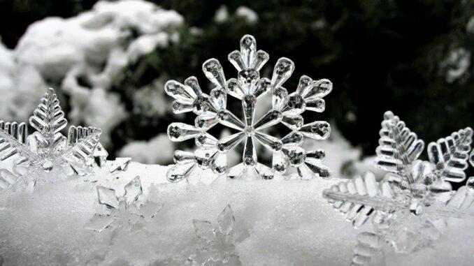 Sněhové vločky zblízka