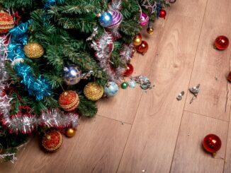 Povalený vánoční stromek.