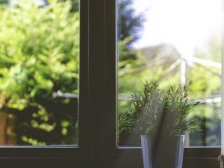 Květináč za oknem.