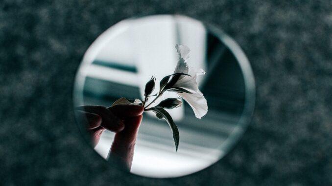 Bílý kvítek v dlani