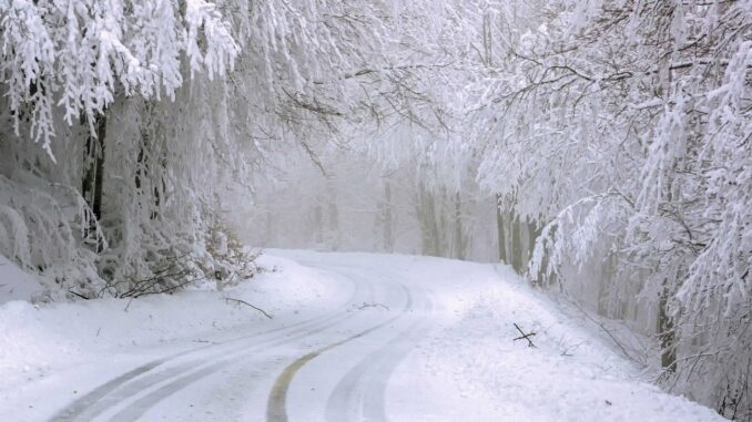 Zasněžené stromy se sklánějí nad zasněženou silnicí
