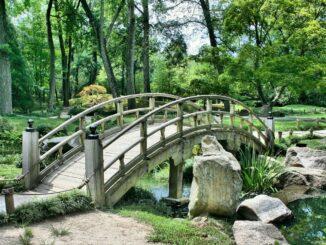 Dřevěný mostek v zahradě.