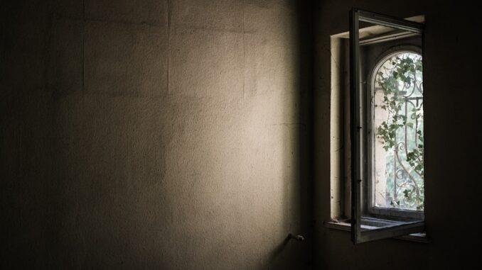 Okno do zahrady