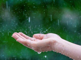 Prší, dlaň nastavená do deště zachytává kapky.