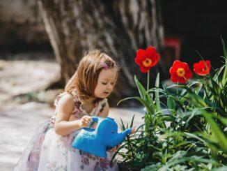 Holčička zalévá květiny.