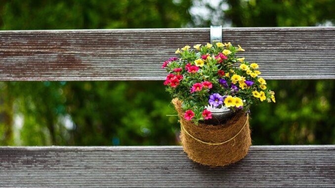 Květináč.