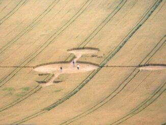 Kruhy v obilí